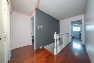 Photo 21: 8631 DAKOTA Place in Richmond: Woodwards House for sale : MLS®# R2471429