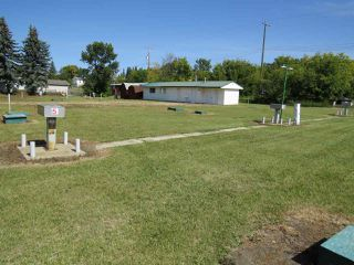 Photo 3: 4910 48 Street: Sedgewick Vacant Lot for sale : MLS®# E4170848