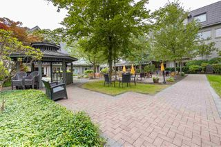 "Photo 13: 115 8888 202 Street in Langley: Walnut Grove Condo for sale in ""Chartwell Langley Gardens"" : MLS®# R2406597"