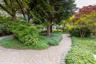 "Photo 12: 115 8888 202 Street in Langley: Walnut Grove Condo for sale in ""Chartwell Langley Gardens"" : MLS®# R2406597"