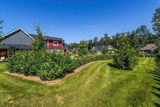 "Photo 19: 10428 WILDROSE Drive in Rosedale: Rosedale Popkum House for sale in ""Rose Garden Estates"" : MLS®# R2418839"