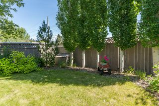 Photo 27: 16 WALNUT Drive SW in Calgary: Wildwood Detached for sale : MLS®# A1022816