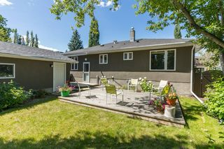 Photo 4: 16 WALNUT Drive SW in Calgary: Wildwood Detached for sale : MLS®# A1022816