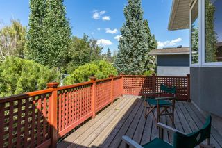Photo 30: 16 WALNUT Drive SW in Calgary: Wildwood Detached for sale : MLS®# A1022816