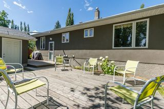Photo 25: 16 WALNUT Drive SW in Calgary: Wildwood Detached for sale : MLS®# A1022816