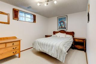 Photo 39: 16 WALNUT Drive SW in Calgary: Wildwood Detached for sale : MLS®# A1022816
