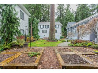 Photo 36: 26 253 171 STREET in Surrey: Pacific Douglas Townhouse for sale (South Surrey White Rock)  : MLS®# R2523156
