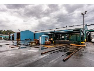 Photo 6: 720 RIVERSIDE Road in Abbotsford: Poplar Industrial for sale : MLS®# C8027941