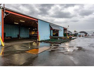 Photo 2: 720 RIVERSIDE Road in Abbotsford: Poplar Industrial for sale : MLS®# C8027941
