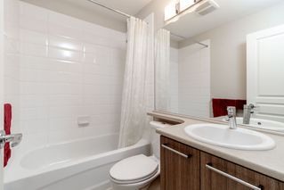 """Photo 14: 138 7938 209 Street in Langley: Willoughby Heights Townhouse for sale in """"RED MAPLE PARK"""" : MLS®# R2405970"""