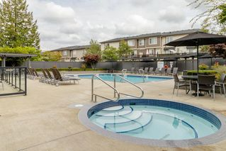 """Photo 20: 138 7938 209 Street in Langley: Willoughby Heights Townhouse for sale in """"RED MAPLE PARK"""" : MLS®# R2405970"""