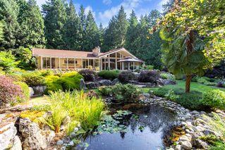 Photo 18: 5021 West Saanich Rd in Saanich: SW Prospect Lake Single Family Detached for sale (Saanich West)  : MLS®# 843813