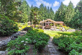 Photo 14: 5021 West Saanich Rd in Saanich: SW Prospect Lake Single Family Detached for sale (Saanich West)  : MLS®# 843813