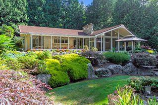Photo 17: 5021 West Saanich Rd in Saanich: SW Prospect Lake Single Family Detached for sale (Saanich West)  : MLS®# 843813
