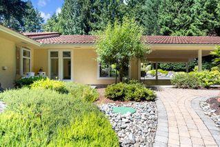 Photo 10: 5021 West Saanich Rd in Saanich: SW Prospect Lake Single Family Detached for sale (Saanich West)  : MLS®# 843813