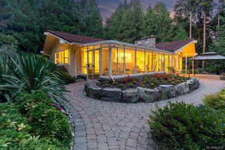 Photo 8: 5021 West Saanich Rd in Saanich: SW Prospect Lake Single Family Detached for sale (Saanich West)  : MLS®# 843813