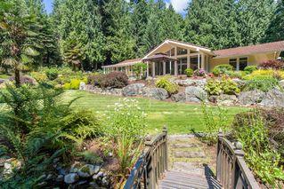 Photo 12: 5021 West Saanich Rd in Saanich: SW Prospect Lake Single Family Detached for sale (Saanich West)  : MLS®# 843813