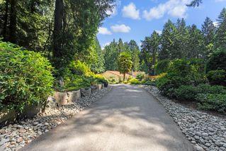 Photo 16: 5021 West Saanich Rd in Saanich: SW Prospect Lake Single Family Detached for sale (Saanich West)  : MLS®# 843813