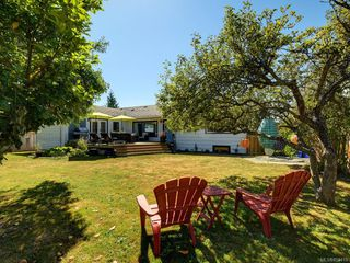 Photo 22: 3171 Carman St in : SE Camosun Single Family Detached for sale (Saanich East)  : MLS®# 850419