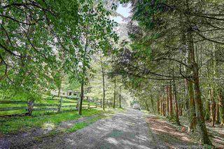 """Photo 3: 27970 110 Avenue in Maple Ridge: Whonnock House for sale in """"Whonnock"""" : MLS®# R2498720"""