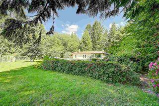 """Photo 20: 27970 110 Avenue in Maple Ridge: Whonnock House for sale in """"Whonnock"""" : MLS®# R2498720"""