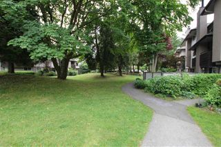 """Photo 15: 10531 HOLLY PARK Lane in Surrey: Guildford Townhouse for sale in """"HOLLY PARK LANE"""" (North Surrey)  : MLS®# R2395127"""