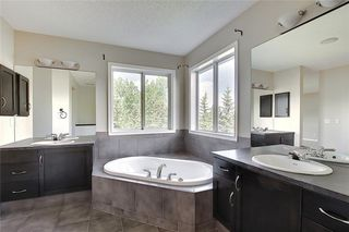 Photo 27: 152 COPPERFIELD GR SE in Calgary: Copperfield Detached for sale : MLS®# C4297593