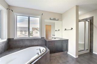 Photo 26: 152 COPPERFIELD GR SE in Calgary: Copperfield Detached for sale : MLS®# C4297593