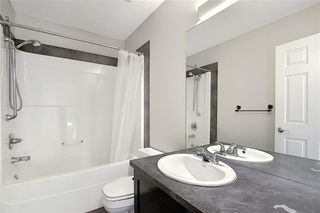 Photo 32: 152 COPPERFIELD GR SE in Calgary: Copperfield Detached for sale : MLS®# C4297593