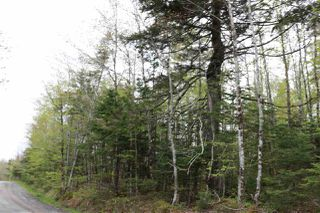 Photo 3: Coles Road in Mount Uniacke: 105-East Hants/Colchester West Vacant Land for sale (Halifax-Dartmouth)  : MLS®# 202011714