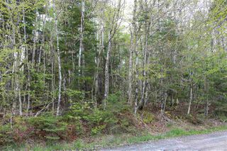 Photo 2: Coles Road in Mount Uniacke: 105-East Hants/Colchester West Vacant Land for sale (Halifax-Dartmouth)  : MLS®# 202011714
