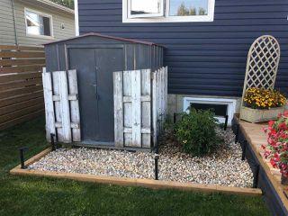 Photo 9: 10507 105 Street: Westlock House for sale : MLS®# E4219235