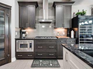 Photo 8: 12832 202 Street in Edmonton: Zone 59 House for sale : MLS®# E4168939