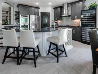 Photo 7: 12832 202 Street in Edmonton: Zone 59 House for sale : MLS®# E4168939