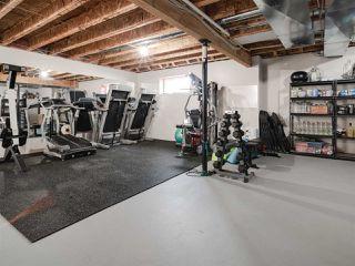 Photo 25: 12832 202 Street in Edmonton: Zone 59 House for sale : MLS®# E4168939