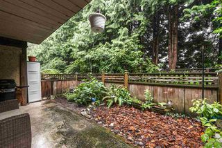 "Photo 17: 613 555 W 28TH Street in North Vancouver: Upper Lonsdale Condo for sale in ""Cedarbrooke Village"" : MLS®# R2399353"