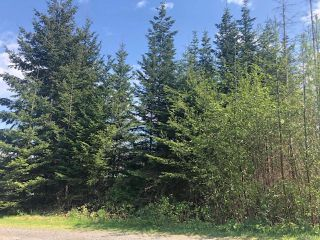 Photo 1: Lt 4 Ross Ave in ROYSTON: CV Courtenay South Land for sale (Comox Valley)  : MLS®# 838173