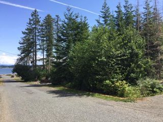 Photo 2: Lt 4 Ross Ave in ROYSTON: CV Courtenay South Land for sale (Comox Valley)  : MLS®# 838173