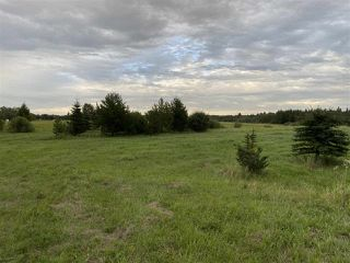 Photo 2: 41 242075 TWP RD 472: Rural Wetaskiwin County Rural Land/Vacant Lot for sale : MLS®# E4211566