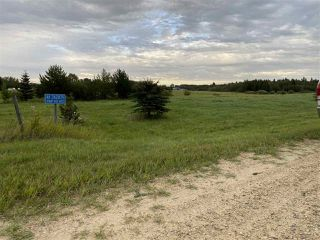Photo 3: 41 242075 TWP RD 472: Rural Wetaskiwin County Rural Land/Vacant Lot for sale : MLS®# E4211566