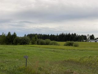 Photo 5: 41 242075 TWP RD 472: Rural Wetaskiwin County Rural Land/Vacant Lot for sale : MLS®# E4211566