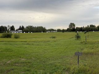 Photo 4: 41 242075 TWP RD 472: Rural Wetaskiwin County Rural Land/Vacant Lot for sale : MLS®# E4211566