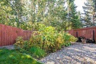 Photo 45: 5307 35 Avenue in Edmonton: Zone 29 House for sale : MLS®# E4212144