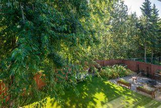 Photo 46: 5307 35 Avenue in Edmonton: Zone 29 House for sale : MLS®# E4212144
