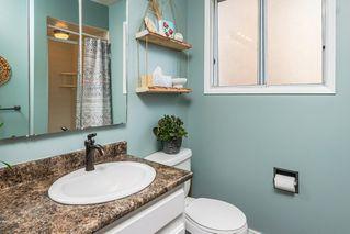 Photo 20: 5307 35 Avenue in Edmonton: Zone 29 House for sale : MLS®# E4212144