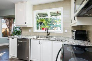 Photo 6: 5307 35 Avenue in Edmonton: Zone 29 House for sale : MLS®# E4212144