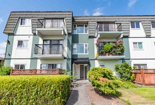 """Main Photo: 332 8051 RYAN Road in Richmond: South Arm Condo for sale in """"MAYFAIR COURT"""" : MLS®# R2394639"""