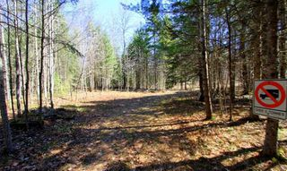 Photo 12: Lt 8 Maritime Road in Kawartha Lakes: Rural Bexley Property for sale : MLS®# X4728533