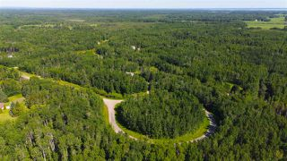 Photo 41: 6 53223 RGE RD 34: Rural Parkland County House for sale : MLS®# E4202866