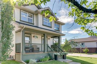 Main Photo: 304 PRESTWICK Terrace SE in Calgary: McKenzie Towne Detached for sale : MLS®# C4305399